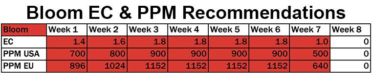 Bloom EC&PPM Rec
